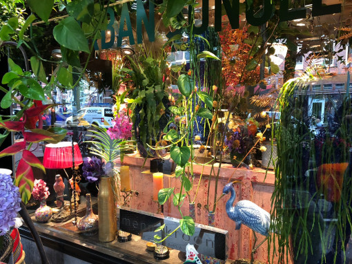concept store theme THE URBAN JUNGLE